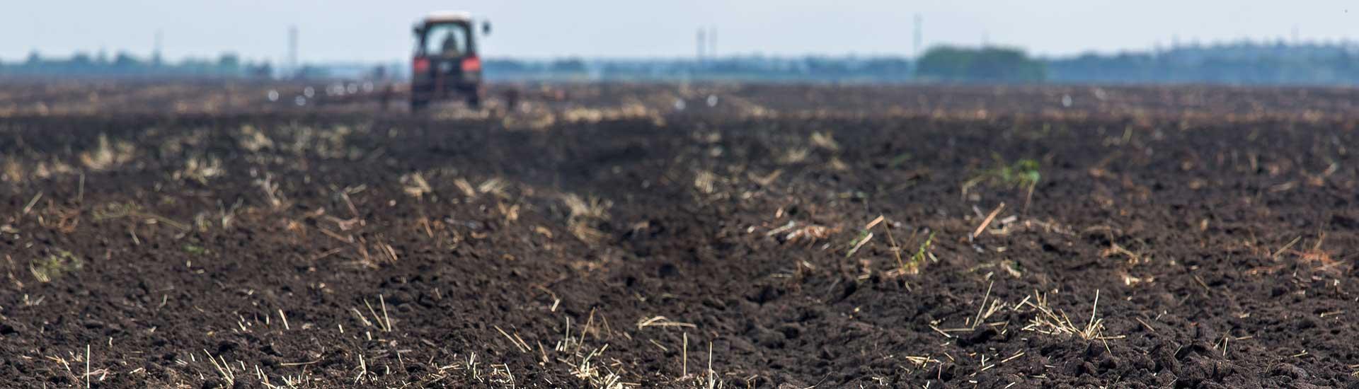 Land Reparation